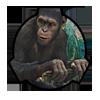 Opice_spolu_silne.png